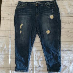 Lane Bryant Boyfriend Destructed Jeans Plus Sz 28